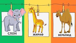 Животные птицы Африки Азии   Обучающие КАРТОЧКИ Домана   ЗВУКИ ЖИВОТНЫХ слон жираф тигр лев обезьяна