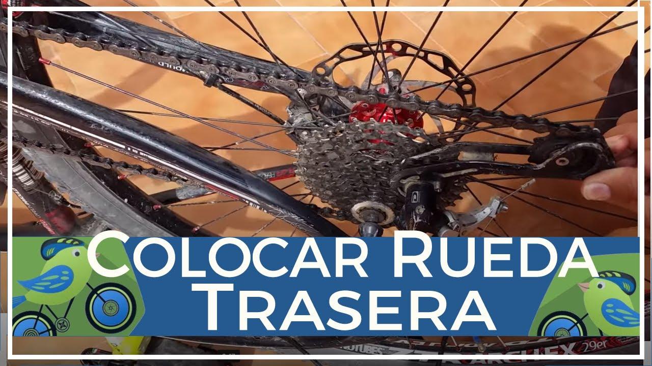 Cómo colocar correctamente la rueda trasera de una bici de montaña ...