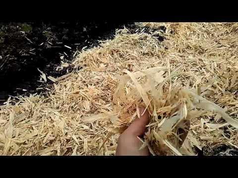 Подготовка почвы под посадку малины