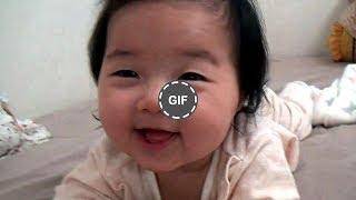 【笑える&面白画像】何回見ても笑える面白GIF画像集- Gifs with Sound