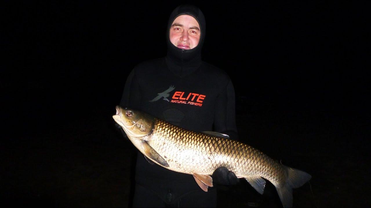 Новомичуринское водохранилище рыбалка 2019