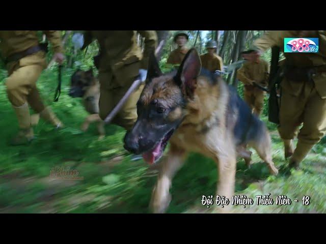 Chú Chó Thông Minh Nhật Bản Dẫn Cả Đội Lính Đặc Công Chạy Hơn 10Km Truy Quét Quân Địch   888TV