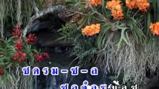 บรรเลง สะล้อ ซอ ซึง เพลงล่องแม่ปิง โดยครู ธนันท์ชัย จันทร์หล้า