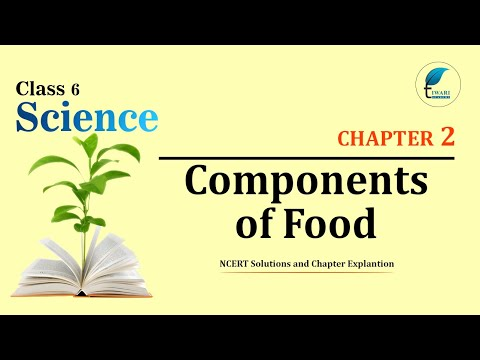 NCERT Solutions Class 6 Science Chapter 2