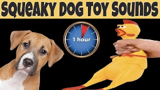 Squeaky Toy Dog Toy Sounds 1 Hour | DOG TOYS ONE HOUR
