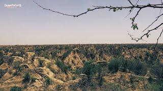 Videos: Chambal River - WikiVisually