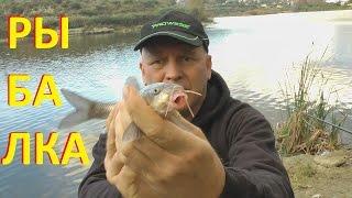 Рыбалка поплавочной удочкой. Рыбалка в городском пруду.(Рыбалка поплавочной удочкой. Рыбалка в городском пруду. Есть всем известная фраза - Как новый год встретишь..., 2016-01-22T13:26:04.000Z)