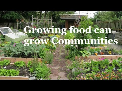 How Growing Food can Grow Communities