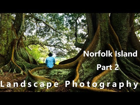 Landscape Photography Beautiful Ball Bay Sunrise - Norfolk Island Part 2