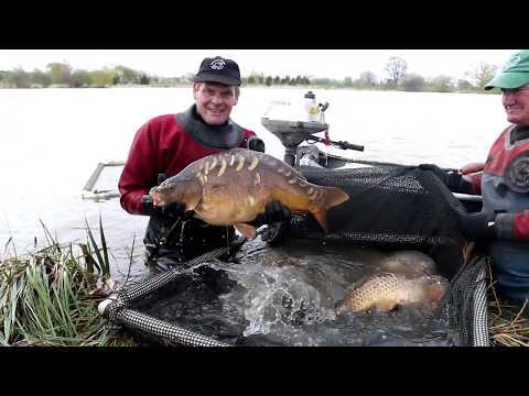 *CARP FISHING*  Merrington Carp Fishery - Shropshire
