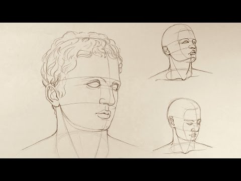 Proportions of the Head - Anatomy Master Class for figurative artists