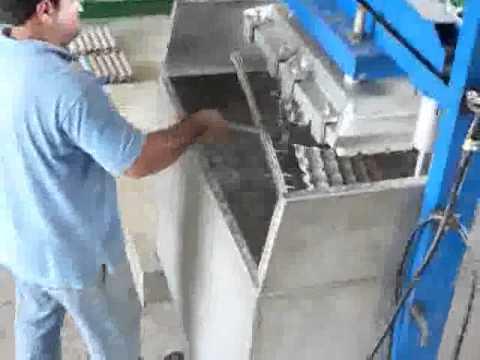 Maquina para fabricar bandejas para huevos maples de for Cuanto sale hacer una pileta de material