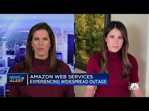 Amazon Web Services Was Hit by Outages. What You Need to Know.