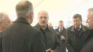 Лукашенко требует выполнения программы по развитию Полесья