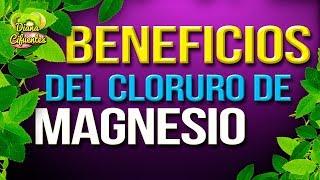 Beneficios Del Cloruro De Magnesio - Propiedades Del Cloruro De Magnesio