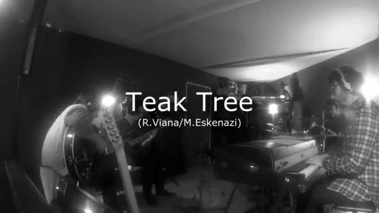 Jekitiba - Teak Tree (studio session)