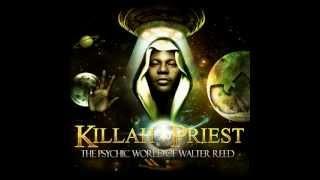 Killah Priest - New Reality