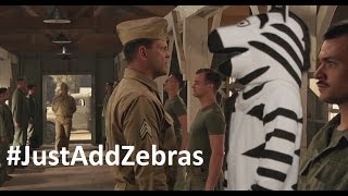 John Oliver Zebra Project