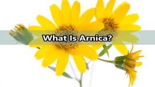 What Is Arnica?- Benefits of Arnica- Arnica Montana