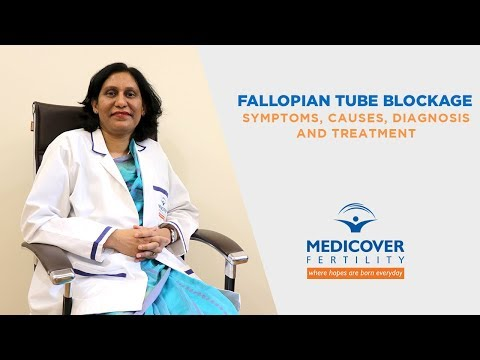 fallopian-tube-blockage:-symptoms,-causes,-diagnosis-and-treatment