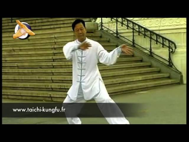 Zheng Xudong - Tai Chi style Chen Laojia 15 Mouvements Essentiels [陈氏太极拳老架 Taijiquan style Chen]