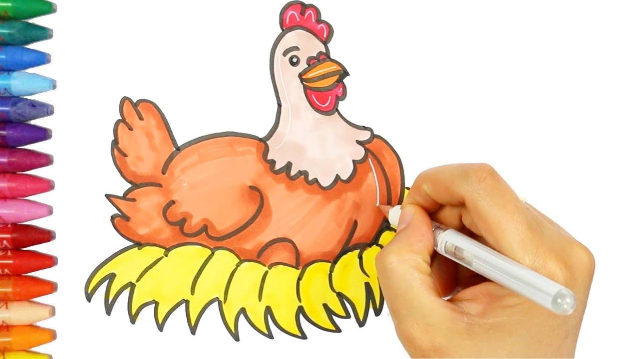 Tavuk çizim Nasıl Yapılır çocuk Ve Bebek Için çizim Ve Boyama