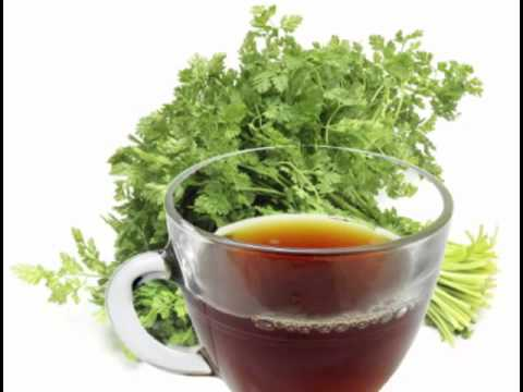 Chervil Tea Health Benefits