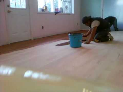 how to stain a hardwood floor