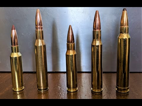 5 Best Hunting Rifle Cartridges For New Hunters