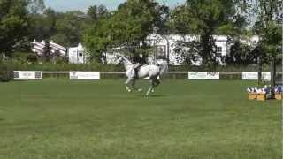 Capriole-Millar Brooke Farm round 2