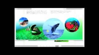 видео Электронные учебники по экологии