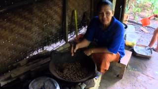 Kopi Luwak (Civet Cat Coffee) Processing in Tebasari Farm in Bali