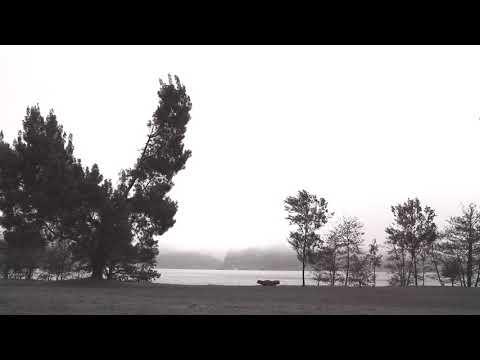 A STAR IS BORN - Too Far Gone (Lyrics Video) | Bradley Cooper & Lady Gaga