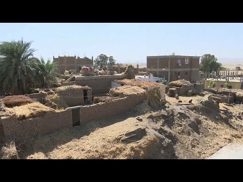 شاهد: قرية مصرية تواجه دماراً كبيراً بسبب غزو النمل الأبيض…  - نشر قبل 2 ساعة