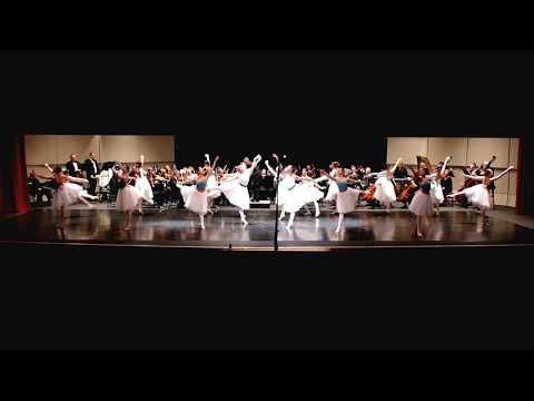 Tchaikovsky - Swan Lake Ballet, Op.208 - Valse