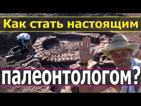 Как стать палеонтологом