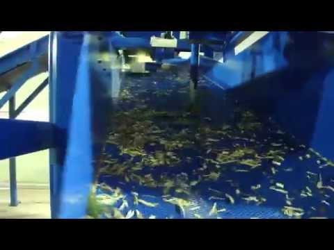 Brother sawdust produce machine _YM600BM (in Korea)