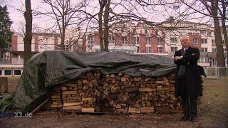 Realer Irrsinn: Baugenehmigung für Holzstapel