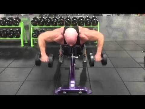 Rhomboids Dumbbell Supported High Row