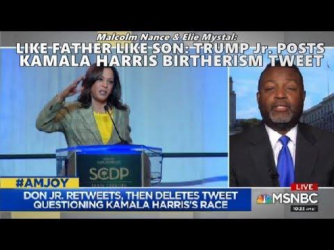 Like Father Like Son: Trump Jr. Posts Kamala Harris Birtherism Tweet // Malcolm Nance AM Joy MSNBC