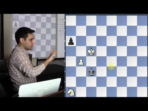 Imaginative Compositions | Endgame Exclam!! - GM Elshan Moradiabadi