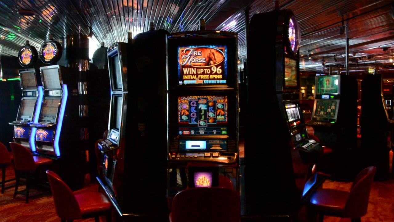 Ms zuiderdam casino online casino no download free play