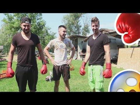 MECI DE BOX | ANDY VS BERCEA🥊🥊