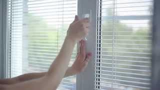 видео окна века