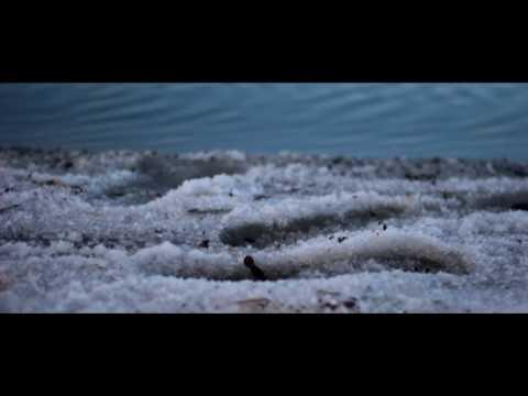 CHILL MUSIC - SALT LAKE IMAGE , BRAILA , ROMANIA (WINTER ) by Petru-Ioan Pandrea