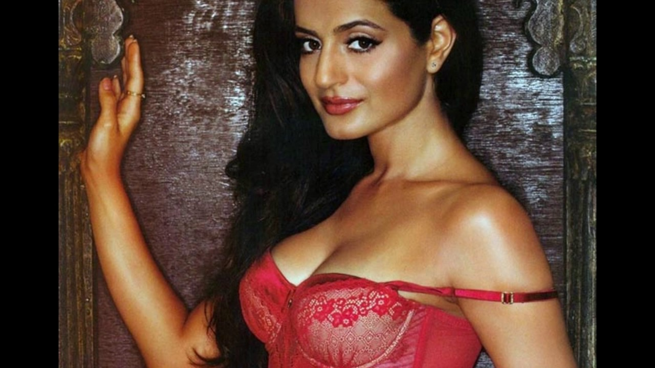 Actress Hot Photos Actress amisha patel hot photos