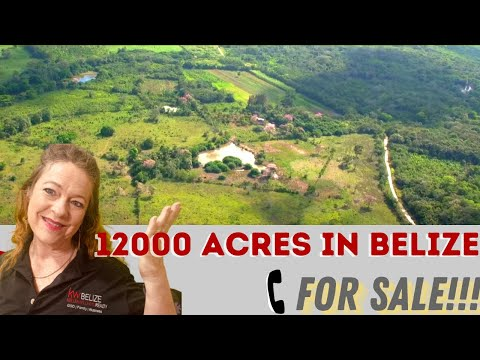 12000 Acres for Sale in Belize Central America   English Version