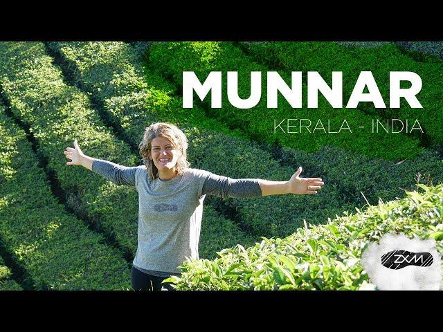 Munnar y sus plantaciones de te - Kerala - India - ZXM