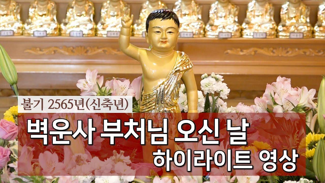 불기 2565년(신축년) 벽운사 부처님 오신 날 하이라이트 영상