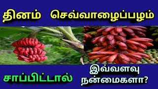 Kalachikai Benefits In Tamil